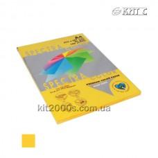 Папір кольоровий А4 80г/м2, 100 арк. Spectra Color 200 Gold інтенсив (золотий)